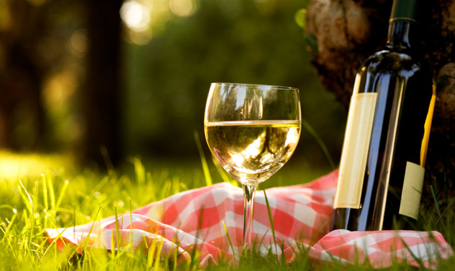 Drink Life Up with Our Paso Robles Wine Tour Package & Vineyard Picnic