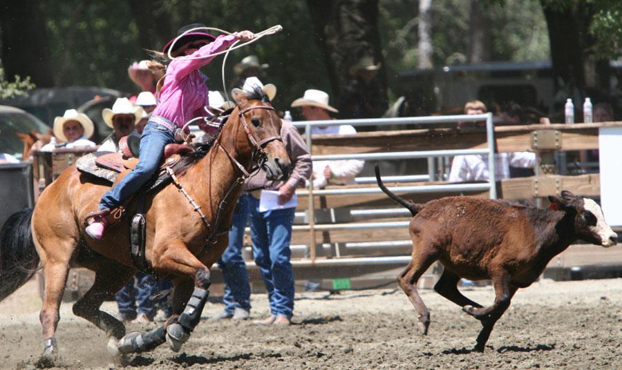 Pacific Coast Cutting Horse Association March Derby