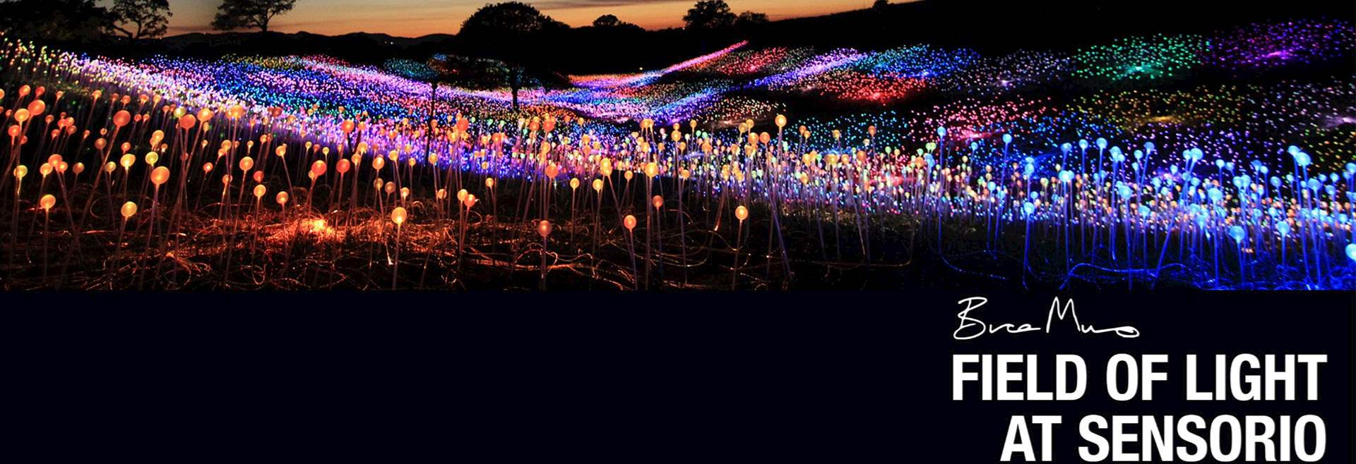 Field of Light at Sensorio Special Discount at Paso Robles Hotels