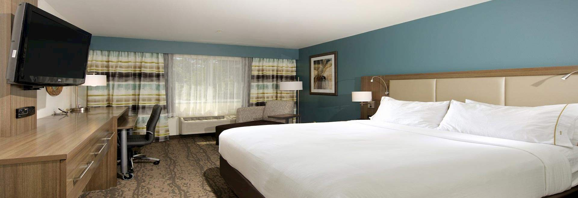 Accommodations at Holiday Inn Express Hotel & Suites - Paso Robles